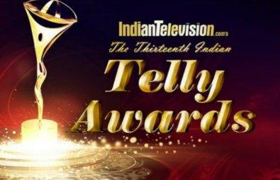 13th Indian Telly Awards (2014)
